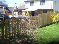 Fence Gallery Photo - Transitioninf grom the outside.jpg