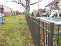 Fence Gallery Photo - 54'' Residential Aluminum Fence 4.jpg