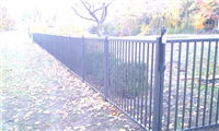 Fence Gallery Photo - Lifeguard Aluminum Fence 1.jpg