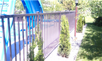 Fence Gallery Photo - Aluminum Pool Fence 2.jpg