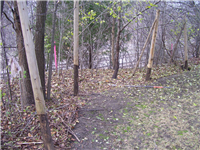 Fence Gallery Photo - Fence Removal 1.jpg