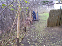 Fence Gallery Photo - Fence Removal 2.jpg