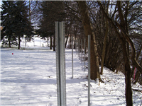 Fence Gallery Photo - Steel Posts for Wood 7.jpg