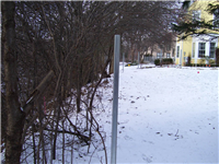 Fence Gallery Photo - Steel Posts for Wood 9.jpg